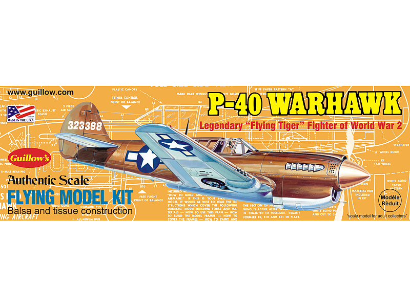 Model Airplane - CURTIS P-40 WARHAWK 501